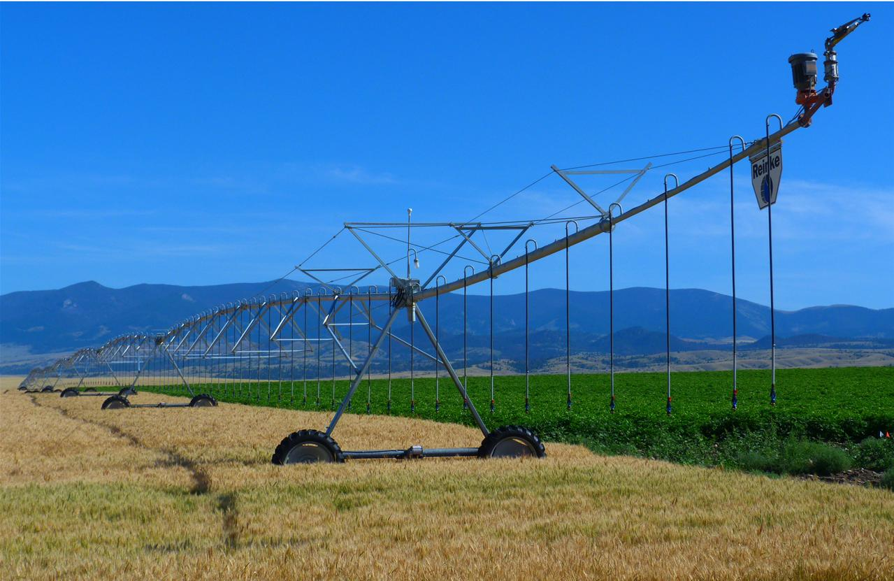 Reinke Pivot on Wheat field
