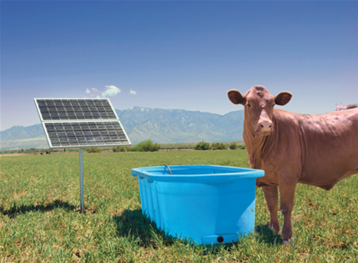 Livestock Watering Applications
